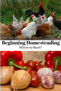 Beginning Homesteading Where to Start