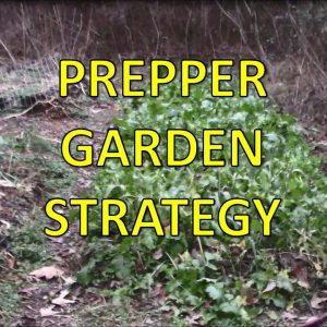 Prepper Gardening Strategy - Avoid Getting Raided