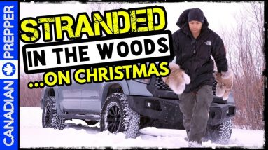 Stranded in the Woods on Christmas: Winter Snow Stuck Truck