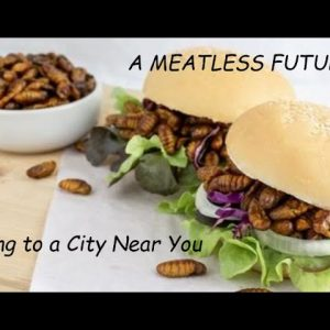 A FUTURE WITH LESS MEAT AND MORE BUGS