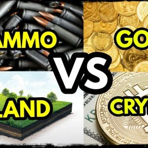 Financial Collapse: Food, Land, Gold, Bitcoin or Stocks?