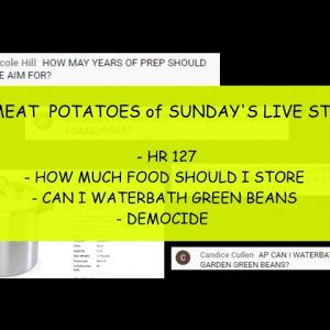 In Case You Missed It: THE MEAT & POTATOES of SUNDAY'S LIVE STREAM CONDENSED VERSION WITH Q&A