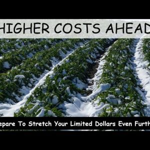 SHORTAGES DUE TO TEXAS FREEZE WILL AFFECT US ALL; PRICES HAVE ONLY ONE WAY TO GO AND THATS UP
