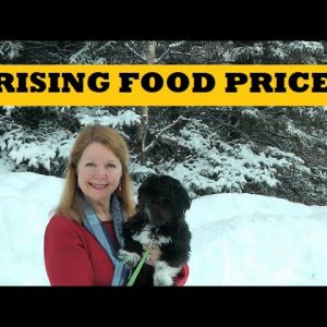 Food Prices Going Up - Stocking A Prepper Pantry - Grocery Prices Alaska