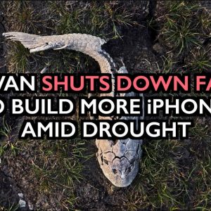 Taiwan Shuts Down Farms to Build More iPhones - Destruction of Food Supply