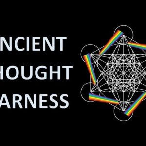 Electromagnetic Frequency Changes Harnessing Human Manifestation
