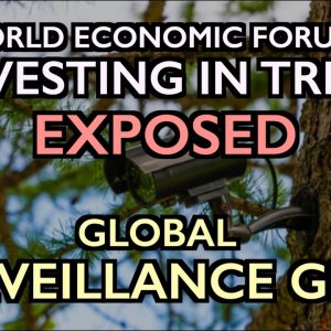"""WEF's """"Invest in Forests"""" Exposed: Global Surveillance Grid"""