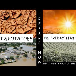 CRAZY WEATHER EVENTS ARE DESTROYING CROPS ALL OVER THE WORLD GET READY FOR A WORLD WITH LESS FOOD