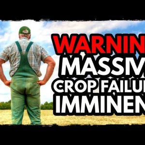 TERRIFYING: Massive Crop Failures Signal Global Collapse PREPARE NOW