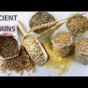 Types of Grains & Flours You Need To Survive a Collapse (Keith Snow 3/4)
