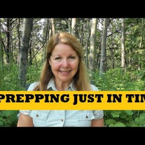 Prepper Priorities Just In Time Prepping - Food Shortages Why Stockpile Food