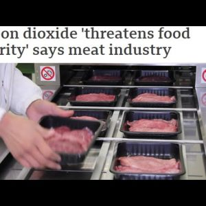 SHORTAGE OF CARBON DIOXIDE THREATENS FOOD SECURITY SAYS MEAT INDUSTRY; U.K. STRUGGLING TO KEEP UP