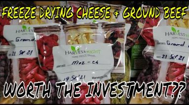 FREEZE DRYING MOZZARELLA CHEESE & GROUND BEEF - IS IT WORTH DOING YOURSELF vs BUYING IT O.T.C.